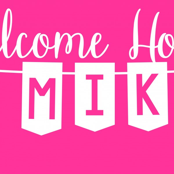 bnr04 01 welcome home baby banner